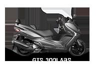 GTS300i ABS